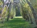 galleria verde